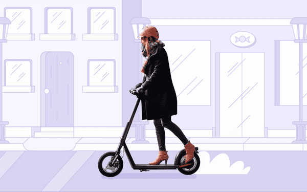 electric scooter protection plan